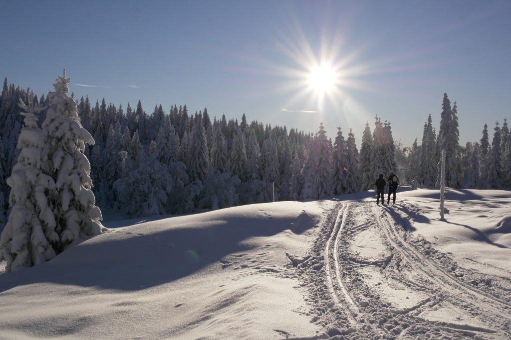 Snøen kom i Oslomarka i januar. Her fra Vestergyllen