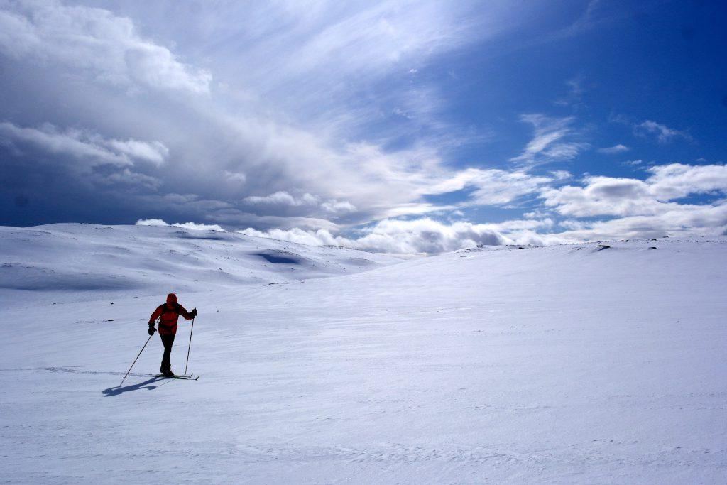 I vinden på Nystølfjellet